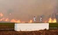 Đám cháy rừng Amazon bao vây sân vận động, cầu thủ bỏ bóng chạy thoát thân