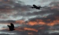 Phi công bắt trúng khoảnh khắc chim tan xác vì 'đấu đầu' Boeing 737