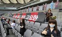 Dàn mannequin trên sân vận động World Cup Seoul ngày 17/5. Ảnh: Yonhap
