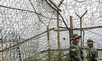Hàng rào dây thép gai trên biên giới Hàn Quốc - Triều Tiên. Ảnh: Bloomberg