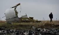 Hiện trường vụ rơi máy bay MH17. Ảnh: Sputnik