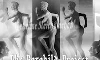 Hình minh họa dự án tuyệt mật Borghild của Đức quốc xã. Ảnh: Vintage Everyday.