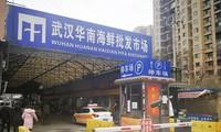 Chợ hải sản ở Vũ Hán – nơi bị tình nghi khởi phát coronavirus mới. Ảnh: Kyodo.