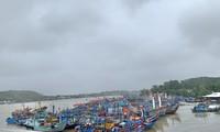 Tàu cá của ngư dân Quảng Ngãi vào bờ tránh trú bão số 9. Ảnh: Nguyễn Ngọc