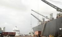 Bình Định cách ly tạm thời các tàu hàng Trung Quốc. Ảnh: Trương Định