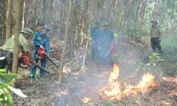Chi cục Kiểm lâm TP Đà Nẵng vừa nâng mức cảnh báo cháy rừng lên mức báo động cao nhất (cấp V), đây là mức báo động rất nguy hiểm và có khả năng cháy lớn và lan tràn nhanh
