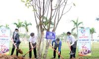 Năm nay, Thành Đoàn Đà Nẵng phấn đầu trồng 50 ngàn cây xanh trên địa bàn, riêng trong Tháng Thanh niên sẽ trao tăng 20 ngàn cây xanh (cây keo) là sinh kế hỗ trợ thanh niên trên địa bàn huyện Hòa Vang lập nghiệp