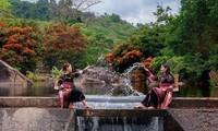 """Hoa trang rừng nở rộ sau nhiều năm, suối Tà Má trở thành điểm """"check-in"""" mới của giới trẻ"""