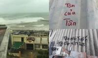 Sau 11 năm, người dân Lý Sơn (Quảng Ngãi) lại vất vả chống cơn bão lịch sử