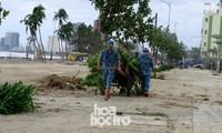 VIDEO: Thành phố ngổn ngang, người dân Đà Nẵng chung tay khắc phục hậu quả sau bão số 9