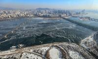 """Hàn Quốc lạnh đến mức sông Hàn hóa """"sân băng"""" khổng lồ, đến biển cũng đóng băng"""
