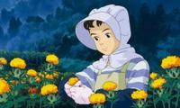 Bạn đọc sáng tác: Cây củ tảo tuổi thơ tô màu xanh tuổi trẻ, êm đềm dẫn tôi tới tương lai