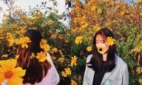 Team Hà Nội đâu cần đến Đà Lạt xa xôi, Ba Vì cũng sắp sửa bước vào mùa hoa dã quỳ rồi!