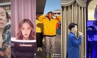 """Ế show vì """"Cô Vy"""", sao Việt đồng loạt chuyển sang chơi TikTok với fan cho đỡ chán?"""