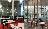 Gấu trúc ngồi ăn cùng bàn với khách