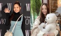 Nhìn cách Park Min Young lấy lại vẻ xinh đẹp mới thấy độ nguy hiểm của chọn nhầm kiểu tóc