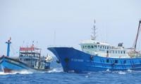 Tàu cá của ngư dân Việt Nam nhiều lần bị tàu Trung Quốc cướp phá tài sản khi khai thác hải sản ở khu vực Hoàng Sa của Việt Nam
