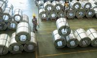 Hoa Sen đã chủ động sử dụng nguồn nguyên liệu Việt Nam hoặc các nguyên liệu có nguồn gốc xuất xứ không phải từ Trung Quốc, Hàn Quốc, Đài Loan để sản xuất các đơn hàng xuất khẩu đi Mỹ