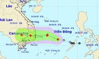 Bộ trưởng NN&PTNT Nguyễn Xuân Cường yêu cầu các địa phương triển khai khẩn trương giải pháp ứng với bão dự kiến đổ bộ vào Nam Trung bộ