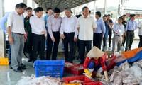 Đoàn công tác Chính phủ do Phó Thủ tướng Trịnh Đình Dũng - Trưởng Ban chỉ đạo Quốc gia về chống khai thác IUU làm Trưởng đoàn, đã đến kiểm tra việc thực hiện chống khai thác IUU trên địa bàn tỉnh Kiên Giang.