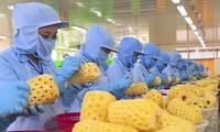 Theo dự báo, các loại trái cây chế biến là một trong những sản phẩm mà Trung Quốc có nhu cầu nhập nhiều thời gian tới.