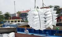 Nhiều DN xuất khẩu gạo bức xúc với cách vận hành xuất khẩu gạo vừa qua, gây thiệt hại cho DN