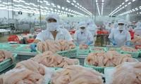 Theo Bộ NN&PTNT, kim ngạch xuất khẩu cá tra giảm tới 40% so cùng kỳ năm ngoái
