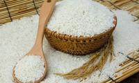 """Nhiều cơ quản lý, chuyên gia phản ứng về phát ngôn của một thương nhân liên khi cho rằng 90 người Việt dùng gạo """"bẩn"""", gây tổn hại đến ngành lúa gạo Việt Nam."""