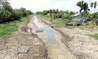 Theo dự báo, Đồng bằng sông Cửu Long có thể đối mặt hạn mặn nghiêm trọng trong mùa khô 2020-2021.