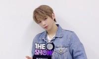 """Kang Daniel bị K-net đồng loạt mỉa mai """"tông điếc"""" dù liên tiếp thắng tại các show ca nhạc"""