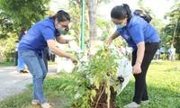 Bạn trẻ thành phố Thủ Đức ra quân trồng hàng ngàn cây xanh