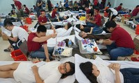Chủ Nhật Đỏ tại TPHCM phá kỷ lục với hơn 15.000 đơn vị máu