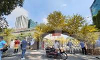 Lễ hội Tết Việt kết thúc sớm hơn dự kiến vì dịch COVID-19