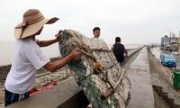 Người dân Hải Phòng đắp bao cát, gia cố nhà cửa trước cơn bão số 3