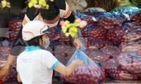 Nữ giáo viên cùng bạn giải cứu hàng chục tấn nông sản huyện Tiên Lãng