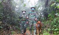 Bộ Quốc phòng chỉ đạo lắp camera trên biên giới chống xuất nhập cảnh trái phép
