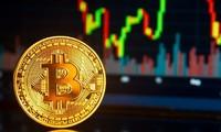 Chứng khoán, Bitcoin tiếp tục tăng kỷ lục, lập đỉnh cao mới. ảnh minh hoạ
