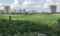 Khu đất dự án BV Đa khoa Quang Trung (quận Hoàng Mai) bị đề nghị thu hồi vì chậm triển khai gần 8 năm nay nhưng đến nay vẫn chưa thực hiện.