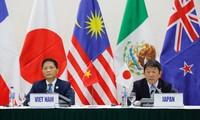 Bộ trưởng Công Thương Trần Tuấn Anh và Bộ trưởng ái thiết kinh tế Nhật Bản Toshimitsu Motegi tại cuộc họp báo về TPP. Ảnh: Hồng Vĩnh