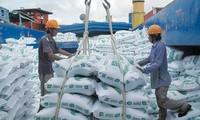 Theo Thứ trưởng Bộ Công Thương Trần Quốc Khánh, rủi ro thiếu gạo hoàn toàn có thể xảy ra nếu không kiểm soát được tốc độ xuất khẩu gạo.