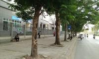 Việc đóng cổng khiến nhiều sinh viên đi bộ xa mới ra được bến xe buýt.