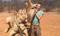 Chụp ảnh với xác động vật hoang dã, nữ thợ săn 12 tuổi lãnh 'bão gạch đá'