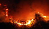 Liên tiếp cháy rừng, Bộ trưởng Công an chỉ đạo khẩn