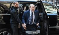 """""""Trùm Hollywood"""" Harvey Weinstein được cho là dương tính với virus gây dịch Covid-19."""