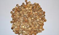 Đi ngắm chim, nhặt được hũ tiền vàng cổ trị giá hơn 26 tỷ đồng