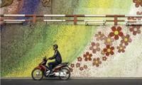 Những bức ảnh đẹp về Việt Nam được vinh danh tại giải quốc tế