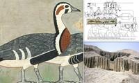 Tiết lộ về bức tranh 4.600 tuổi được mệnh danh là 'Mona Lisa của Ai Cập cổ đại'