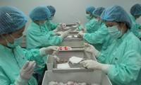 Tín hiệu khả quan khi tiêm vắc-xin ngừa COVID-19 trên chuột tại Việt Nam