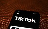 Đến Tổ chức Y tế Thế giới (WHO) cũng đã dùng TikTok và đây là lí do vì sao!