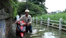 Hàng trăm nhà dân sống trong ngập úng ở Hà Nội